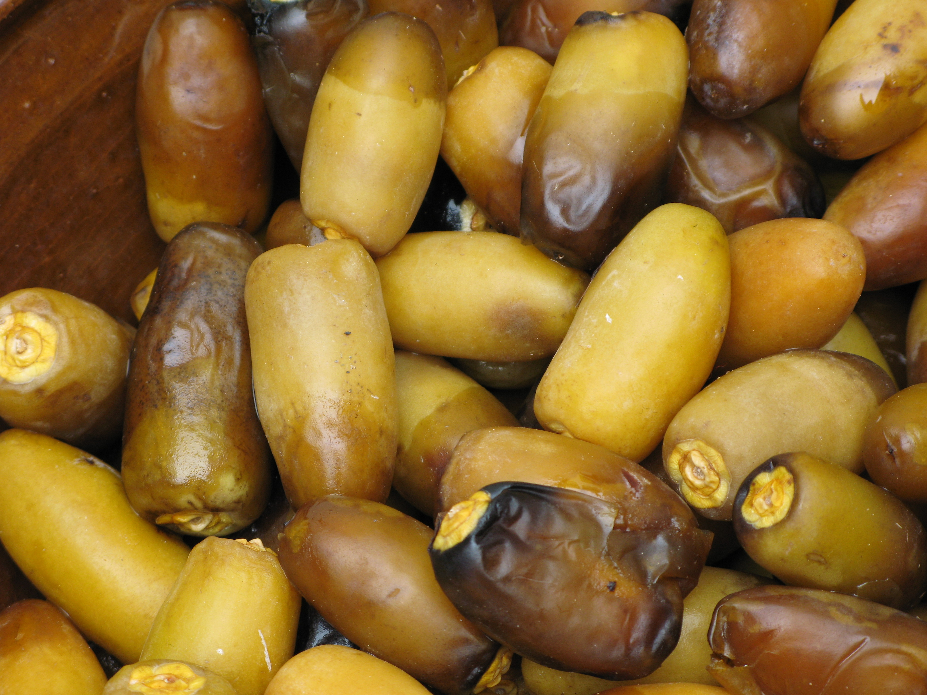The importance of dates in the uae sheikh mohammed centre for yellow dates biocorpaavc Images